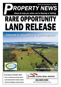 YIRE Property News Issue 1